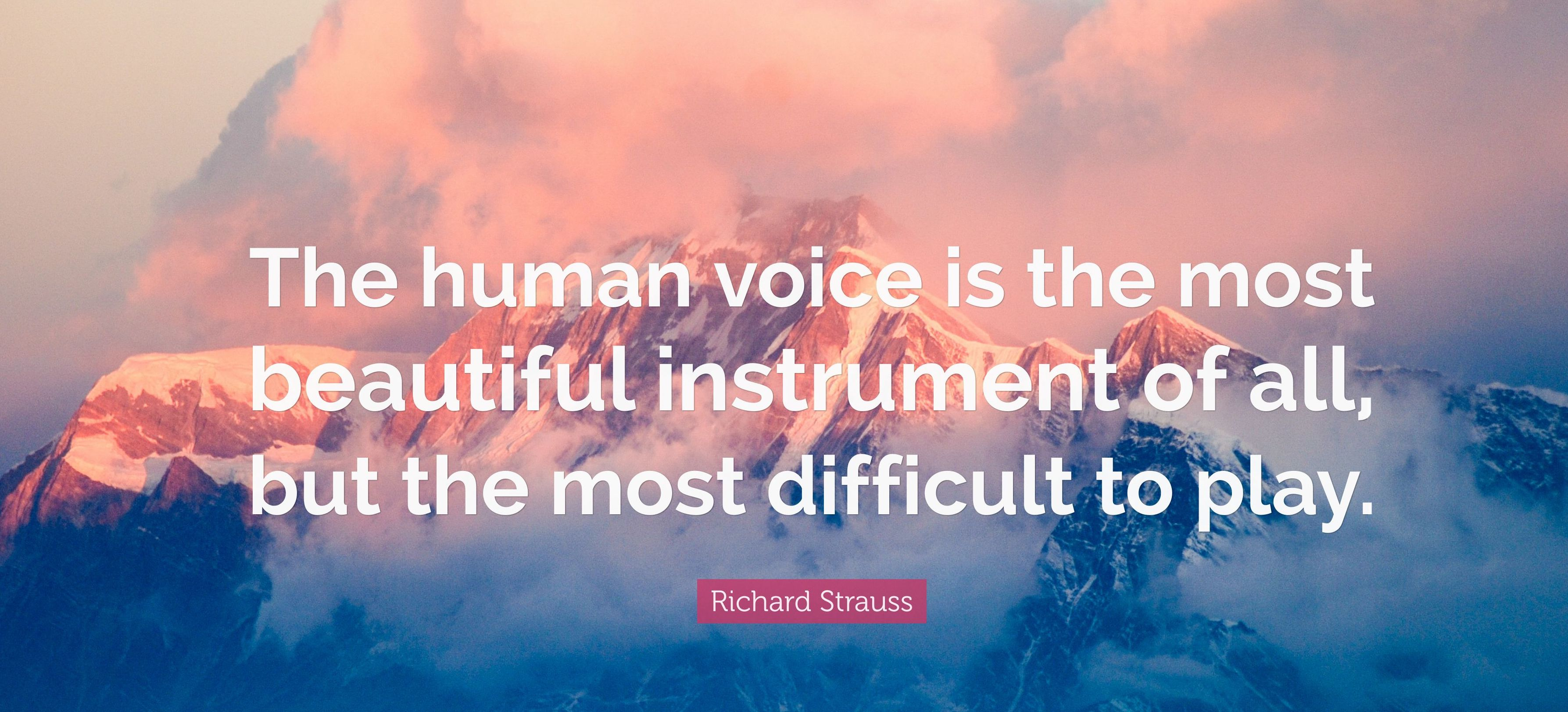 Richard Strauss Quote